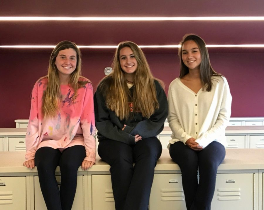 Public Life: Sophomore Eve Smith and freshmen Libby Carroll and Ava Tomlin adjust to life from private to public school in NAHS.