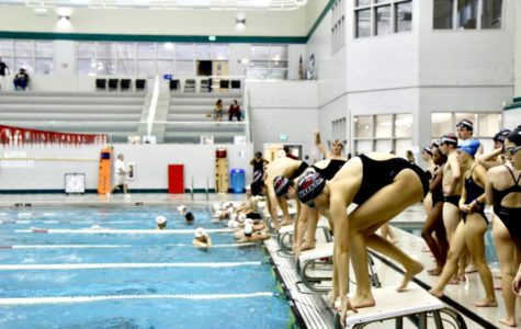 Warrior Swimmers are Lapping the Competition