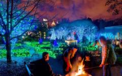 Atlanta's Botanical Gardens Holiday Nights Lights Warms the City's Skyline