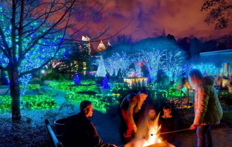 Atlanta's Botanical Gardens Holiday Nights Lights Warms the City's Skyline