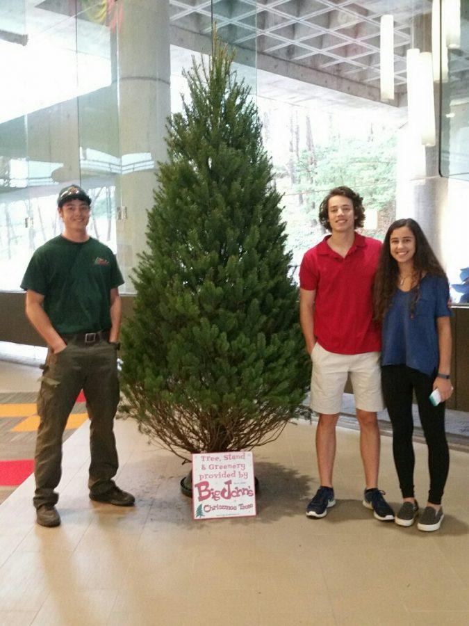 The Livaditis siblings – John, Class of 2015, Lucas, senior, and Anastasia, freshman – are part of a longstanding tradition of Big John's Christmas trees at North Atlanta High School.