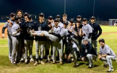Baseball Warriors Show Great Potential Going into Region Play