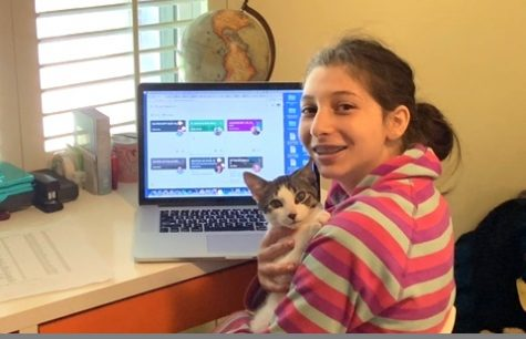 Pet Therapy: Sophomore Emma Goldman, here with her cat Leo, is one of many North students who speak toward the unremitting grind associated with Zoom School. Major complaints focus on the lack of fun -- and social interactions -- typically associated with school.