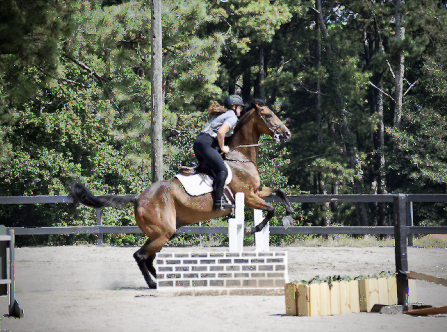 Saddle+Up%3A+North+Atlantas+equestrian+tandem+of+seniors+Shobini+Palaniappan+and+Sydney+Heaton+are+getting+ready+for+the+upcoming+competition+season.